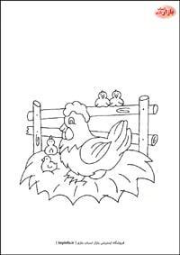 نقاشی مرغ و جوجه هاش