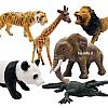 حیوانات جنگل