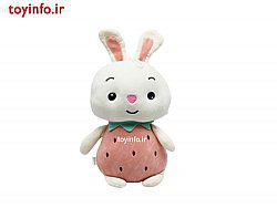خرگوش میوه ای کوچک