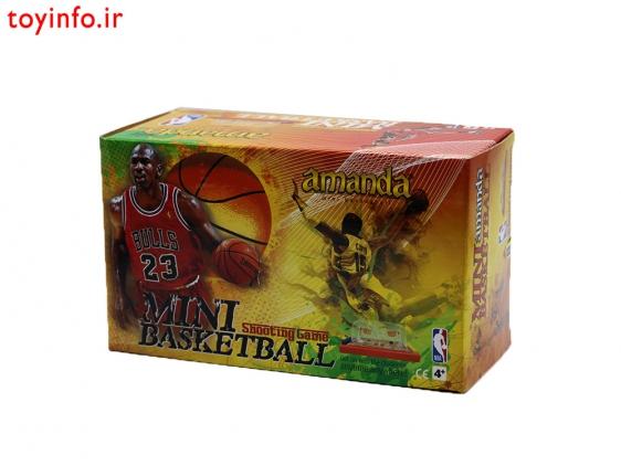 مینی بسکتبال دو نفره